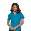 climate-smart_6301s19_teal